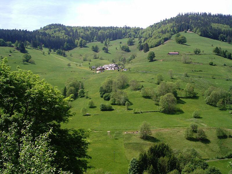 Balade en Forêt-Noire
