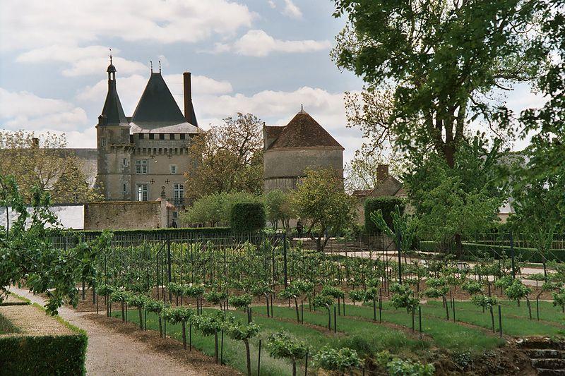 Jardins du Château de Talcy