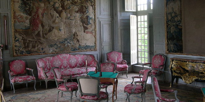 Salont du Château de Talcy