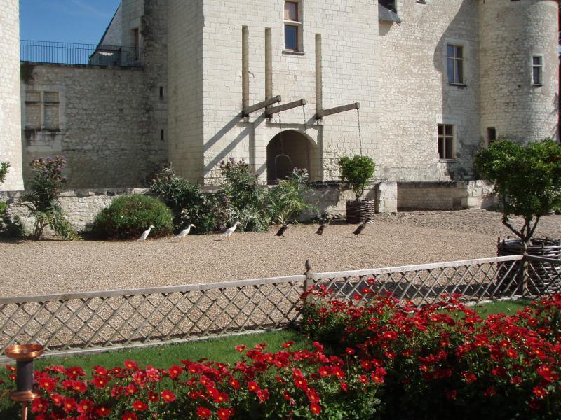 Jardins du Château du Rivau