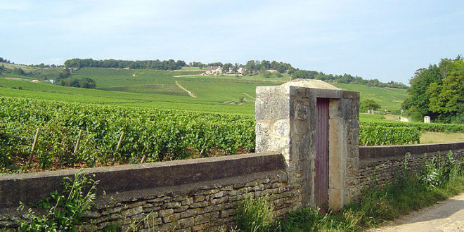 Vignoble de Givry