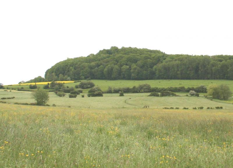 Mont Saint-Jean près de Dudelange