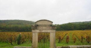 Les Grands Crus de Bourgogne